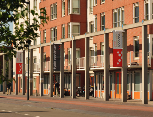 Physical therapy in Haarlem